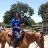 mot-horse-4