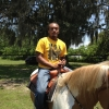 mot-horse-7