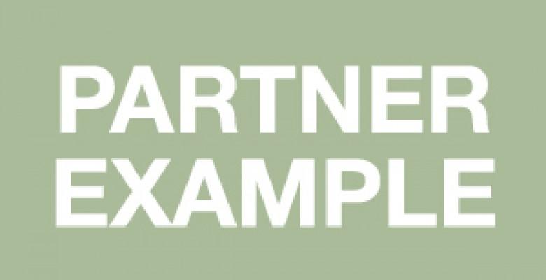 Partner 3